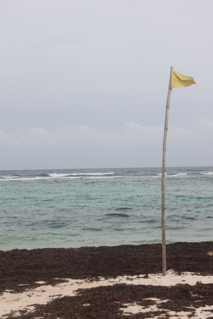 Yellow Flag - safe (ish) swimming