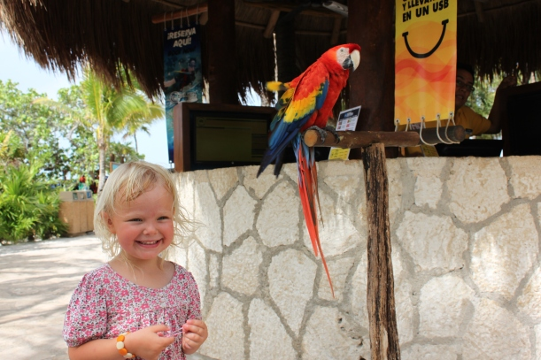 Lily ecstatic at seeing a parrot (he gave her a feather too!) / Xel-ha