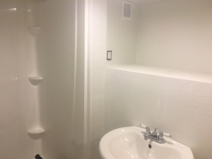 New bathroom in basement with shower installation by Grumpy